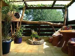 Tree Ideas For Backyard Best 25 Outdoor Cat Tree Ideas On Pinterest Outdoor Cat