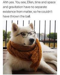 Dog With Glasses Meme - ahh yes memebase funny memes
