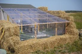 Clear Corrugated Plastic Roof Panel Greenhouse by Blog Simplify And Save Simplify U0026 Save