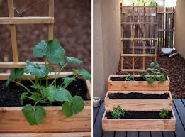 Garden Containers Ideas - patio herb garden containers u2013 outdoor ideas