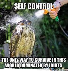 Survival Memes - how to survive by shadowgun meme center