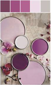 Light Purple Walls by 168 Best Interior Paint Ideas Images On Pinterest Wall Colors