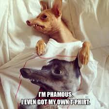 Tuna The Dog Meme - i m phamous got my own t phirt to phrove it i love to laugh and