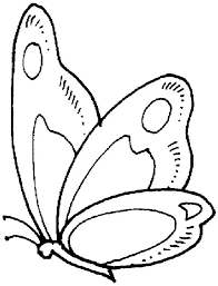 97 kids butterfly printables crafts coloring pages clip
