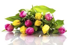 Wedding Flower Flower Talk Your Guide To Wedding Flower Terms Easy Weddings