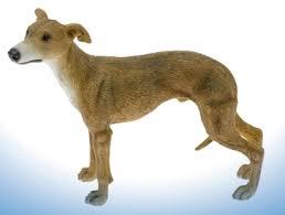 whippet ornament leonardo whippet dogs yourpresents co uk
