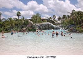 massive swimming pool at the typhoon lagoon disney world orlando