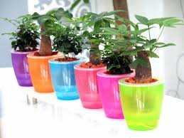 self watering plants the big list of self watering planters for stylish gardening anywhere