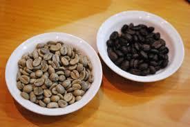 Luwak Coffee kopi luwak coffee from cat poo the travel tart