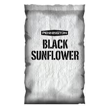 black sunflower food plot seed pennington