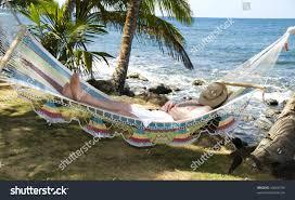 tourist asleep hammock swinging palm trees stock photo 35666194