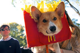park city dog parade halloween gallery our favorite food costumes at the tompkins square