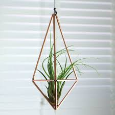 decor hanging glass globe terrarium hanging glass air plant