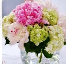florist gainesville fl s day flowers gainesville fl prange s florist