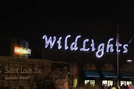 Lights At The Zoo by Saint Louis Adventures