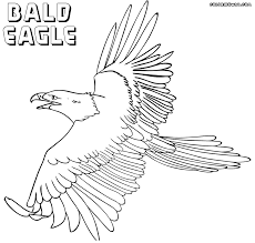 eagle coloring pages coloring pages to download and print