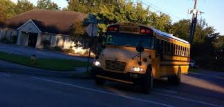painting of 2014 blue bird vision buses at silver creek