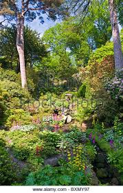 bodnant gardens stock photos u0026 bodnant gardens stock images alamy