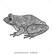 tribal frog stock images royalty free images vectors