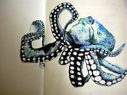 36 best octopus u0027 images on pinterest octopus art octopuses and