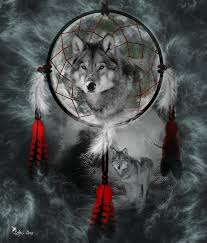 wolf dreamcatcher digital by ali oppy