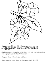 united states symbols coloring pages apple blossom coloring page