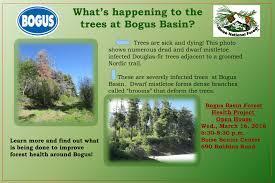 boise national forest land u0026 resources management