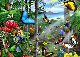 butterflies tropical butterflies paintings birds butterfly