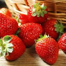 buy fresh fruit online buy fresh certified organic fruit online within your budget