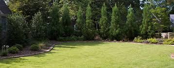 Arkansas Landscapes images Screening plants for arkansas landscapes the good earth garden jpg