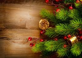 pictures christmas new year tree branches pine cone holidays