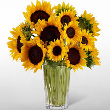 sunflower bouquets the ftd golden sunflower bouquet by vera wang judy s flowers