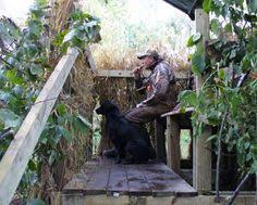 How To Make A Duck Blind Duckdecoysandcalls Com Is Your Premier Choice For Shopping Wood