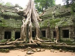 welchedinge kommen am black friday g stiger amazon asia cambodia siem reap temples of angkor angkor two in