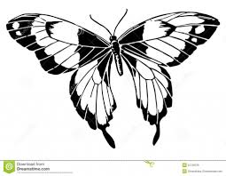 line drawing butterfly best photos of butterfly line drawing