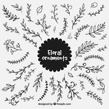 set of leaf ornaments vector free
