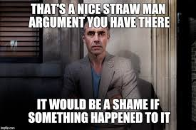 Shame On You Meme - that s a nice straw man argument you have there it would be a