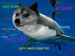 Dogge Meme - doge google search h u m o r pinterest doge memes and