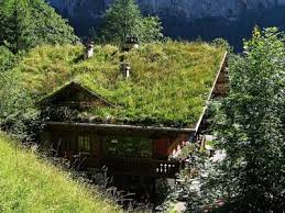 Valley Green Landscaping by Green Roofs Natural Landscaping Gardening And Landscape Design