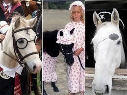 Halloween Animal Costumes Kids 41 Horse Halloween Costume Images Horses