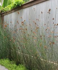 Fencing Ideas For Backyards by Best 20 Diy Privacy Fence Ideas On Pinterest Patio Privacy Diy