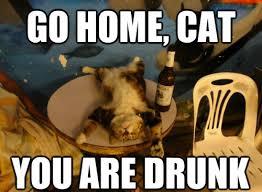 Go Home Meme - go home cat meme cat planet cat planet