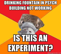 Psychology Memes - hah every time something goes awry in any situation where data