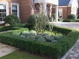 Bushes For Landscaping Garden Design Garden Design With Small Bushes For Landscaping