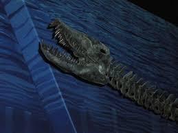 44 best marine reptiles images on prehistoric animals