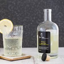 vodka tonic lemon lemon and ginger gin by gin tales notonthehighstreet com