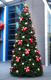 Commercial Christmas Decorations Perth by Traditional Christmas Trees Commercial Christmas Services