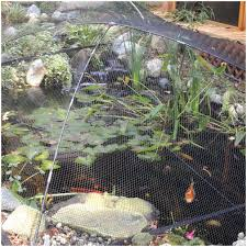 backyards beautiful 25 best ideas about indoor pond on pinterest
