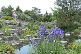 Creating A Rock Garden Creating A Rock Garden Space For