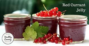 red currant jelly healthy canning